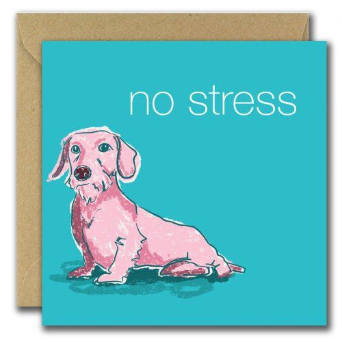 greeting card with image of dog on blue background and text no stress