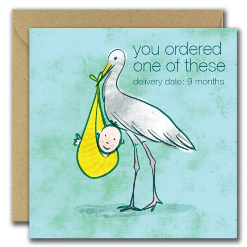 New baby greeting card with stork holding baby with text you ordered one of these