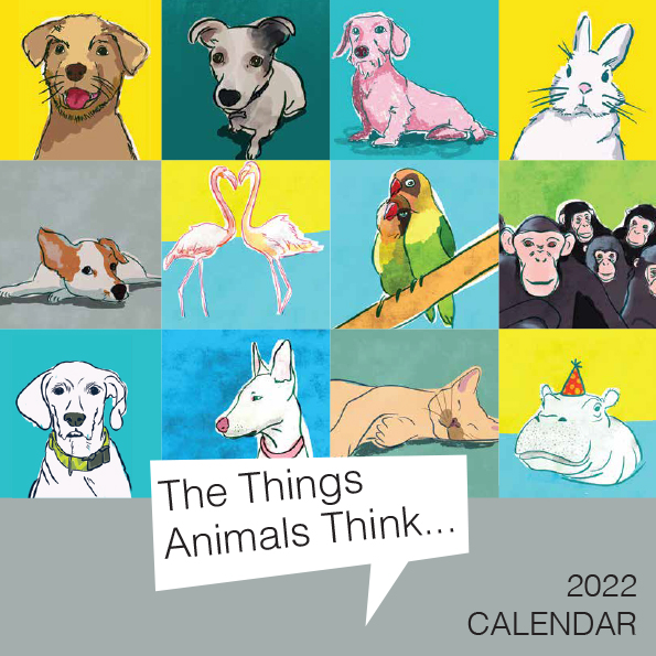 illustrations of animals on colourful backgrounds calendar front page
